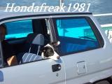 hondafreak1981.JPG