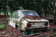 Mazda Familia x1.jpg