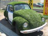 green-car-1.jpg
