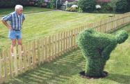 Nachbar.jpg