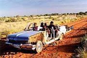 bushmechanics.jpg