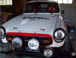 Coupe F weiss AD 169  04.png