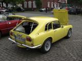 34. Gelbe Zicke 5.jpg
