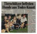 150 hunde aus polen.jpg