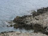 Kreta 2007 108.jpg