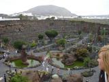 Cactusgarden 9.jpg
