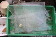 GWH Tür Glasbruch 2.jpg