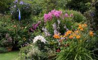 Garten3179.jpg