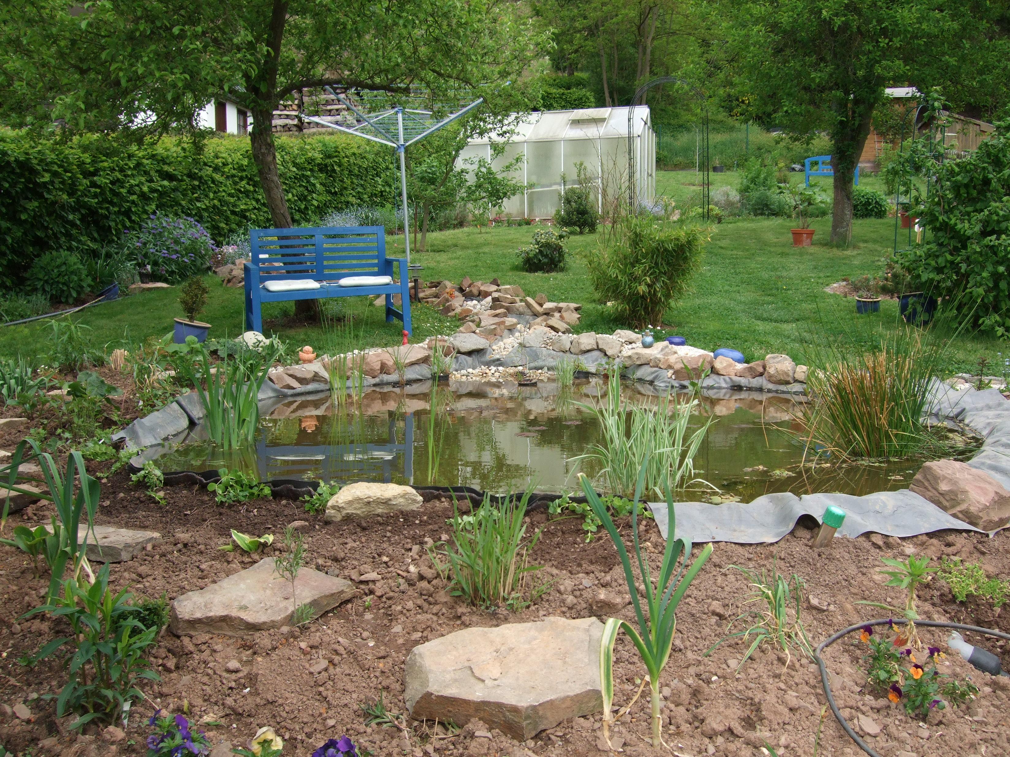 Gartengestaltung unser teich macht fortschritte for Gartengestaltung teich