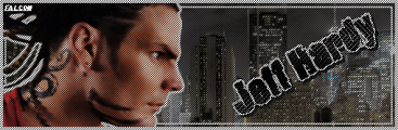 Falcon Banner 2.png