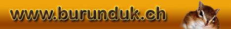 Streifenhörnchen - Informationen - Forum