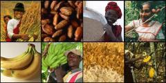 fair trade menschen.jpg