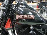 Harley_3.jpg