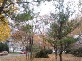 2012-11-15 11.13.04.jpg