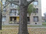 2012-11-15 10.55.05.jpg