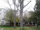 2012-10-25 10.22.17.jpg