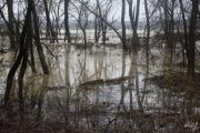 2013.03.31. Zala áradás 3.jpg