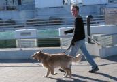 Seehundsbecken2.JPG