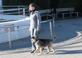 Seehundsbecken5.JPG