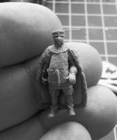 Nordic knight
