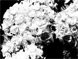 FotoSketcher - P7071064.JPG