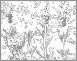 0013-lavend5.jpg