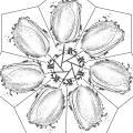 0010-Mandala-37.jpg