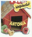 antonia-huette-welpenclub