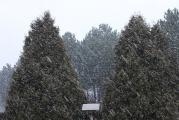 2 15.2. Schneegestöber.jpg