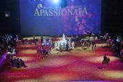 ApassionataFinaleIMG_7951.jpg