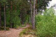 MoorwegIMG_8202.jpg