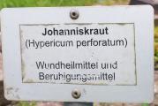Johanniskraut.jpg