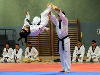Taekwondo_14