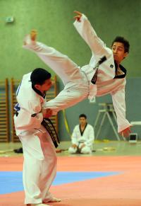 Taekwondo_15