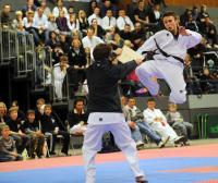 Taekwondo_20