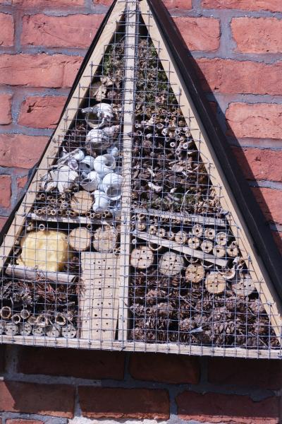 Nisthilfe für verschiedene Insekten.jpg