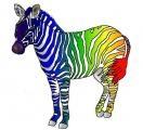 Rainbow_Zebra_by_CrazyClarinetist-c.jpg
