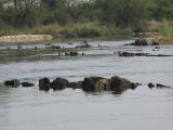 k-Okavango-DSC07927.JPG