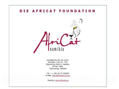 z-African Foundation.jpg