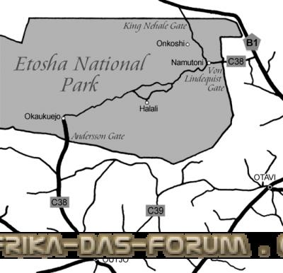 etosha-park.png
