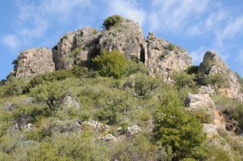 Biotop für Z. rumina, T. ballus u.v.a. in der Alpujara 600m.JPG