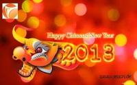 Unser Büroservice wünscht Happy Chinese New Year 2013