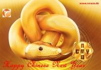 Unser Scanservice und Schreibservice wünscht Happy Chinese New Year 2013