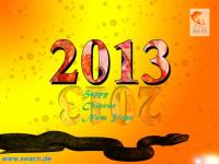 Unser Schreibservice Happy Chinese New Year 2013