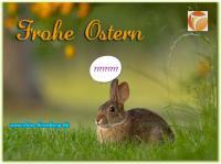 Unser Büroservice, Scanservice und Schreibservice wünscht Fröhliche Ostern