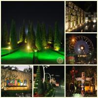 Royal Flora Ausstellung in Chiang Mai 2012. (4)