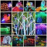 Royal Flora Ausstellung in Chiang Mai 2012. (5)