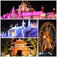 Royal Flora Ausstellung in Chiang Mai 2012. (9)