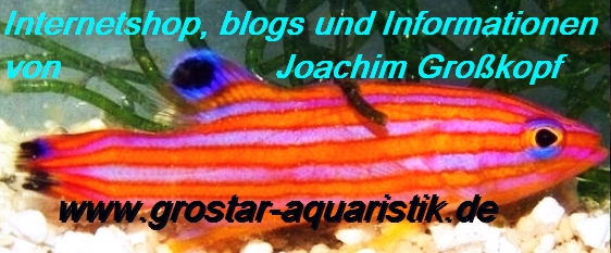 http://shop.grostar-aquaristik.de/