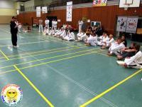 Sommercamp-2015-43